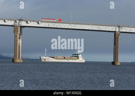 Birch wood tree trunks for pulping arriving at Inverness by Boat in the Moray Firth, Scotland. - Stock Image