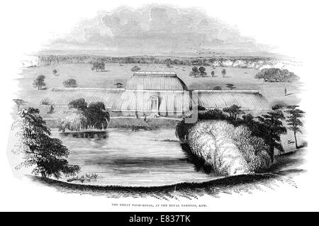 The Great Palm house Royal  Botanic gardens Kew 1844 London Borough of Richmond upon Thames - Stock Image