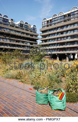 Nigel Dunnett planting design in the Barbican Estate: London. - Stock Image
