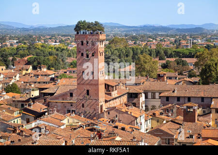 Lucca, Italy. Torre Guinigi - brick tower from 14th century topped by holm-oak trees - Stock Image