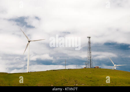 Wind farm overlooking Toora in South Gippsland, Victoria, Australia - Stock Image