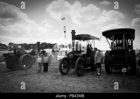 Steam powered traction engines at the 2018 Cheshire Steam Fair - Stock Image