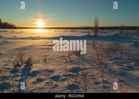 Winter landscape in direct light, warm afternoon light , Gällivare, Swedish Lapland, Sweden - Stock Image