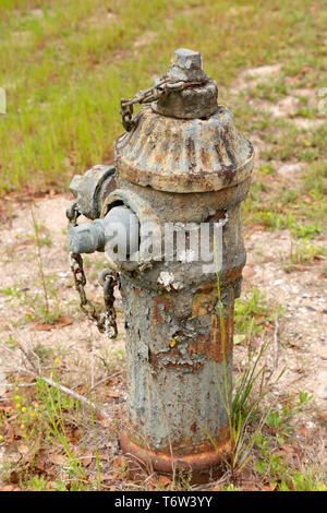 A rust-covered fire hydrant in South Carolina, USA. Lichen grows on the metal surface of the hydrant. - Stock Image