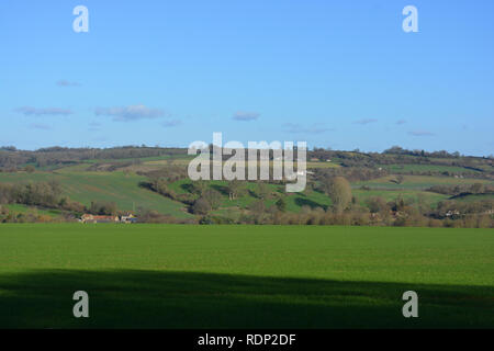View across green field in winter, to fields and farmhouses beyond, near Compton Pauncefoot, Somerset, England. - Stock Image
