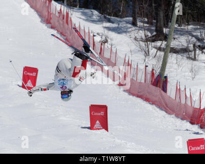Quebec,Canada .Freestyle Canada ,Jordan Kober of the Apex Freestyle Club performs an aerial maneuver at the  National Freestyle Moguls Championship at - Stock Image