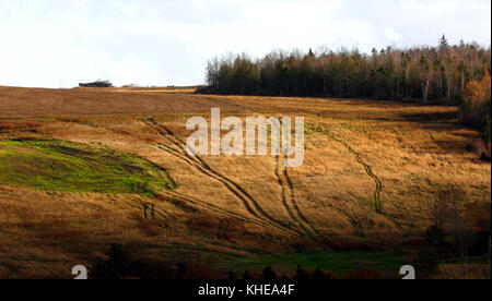 Sun spotlight on tractor paths through a hillside field. - Stock Image