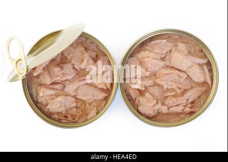 tuna fish canned on white background - Stock Image