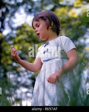 Dandelion blowing game - Stock Image