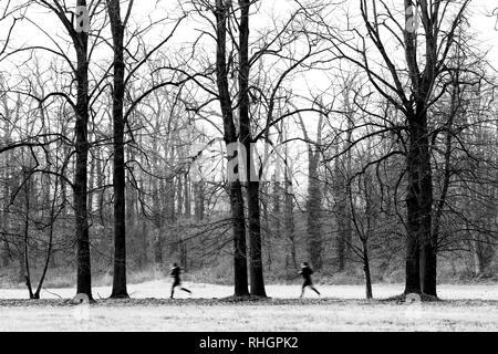 Running clones outdoor activities - Stock Image
