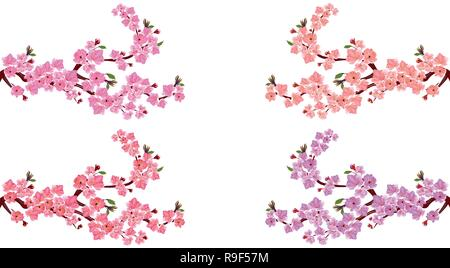 Sakura. Set. Four branches with different shades of flowers. Leaves and cherry buds. On a white background. illustration - Stock Image