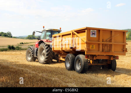 Nuneham Courtenay, Oxfordshire, UK. 30th July, 2014. Wheat harvest at Nuneham Courtenay. Credit: shane leach/ Alamy - Stock Image