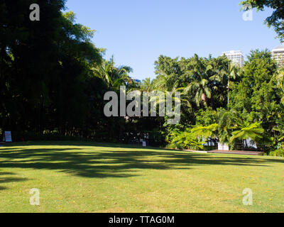 A Public Garden Area In Brisbane - Stock Image