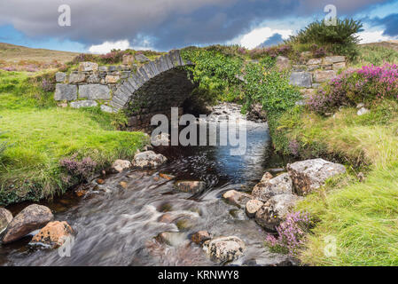 Old stone bridge over a mountain stream at the entrance to the  Poison Glen, Dunlewy, County Donegal, Ireland - Stock Image