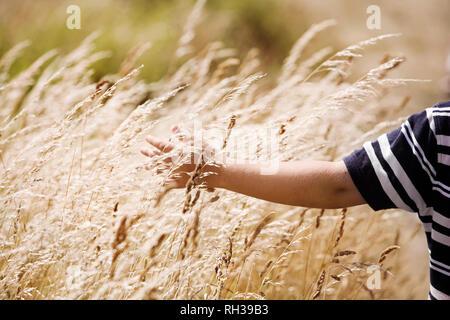 Boys hand on grass - Stock Image