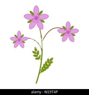 Stork flower flat icon, wild flowers, plant vector illustration isolated on white background - Stock Image