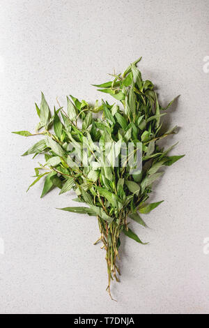 Bunch of Vietnamese oregano greens over grey spotted background. Flat lay, space. - Stock Image