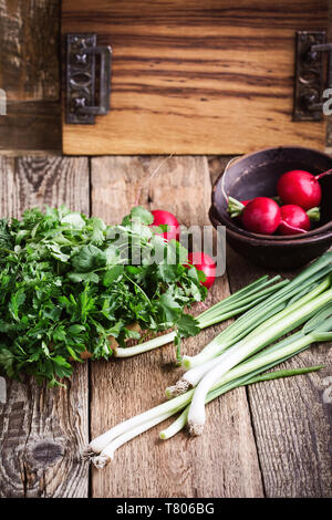 Plant fresh green vegetables and herbs cooking ingredient on rural wooden table. Vegan food  background with cilantro, parsley, dill green onion, radi - Stock Image