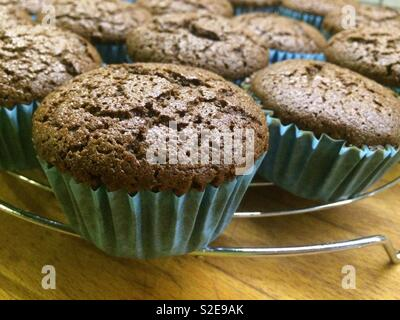 Home made Gluten free Chocolate Cupcakes - Stock Image