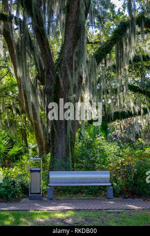 Park bench on shade of oak tree with Spanish moss, New Orleans Sculpture Garden New Orleans, Louisiana, USA - Stock Image