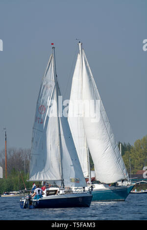 Landscape with waterways and canals of North Holland with boats, canal-side lifestyle in The Netherlands - Stock Image