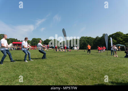 A Martin House Hospice charity event tug of war taking place in Roundhay Park, Leeds, Yorkshire, England, UK - Stock Image