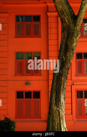 Red Dot Design Museum wall and tree. Singapore - Stock Image