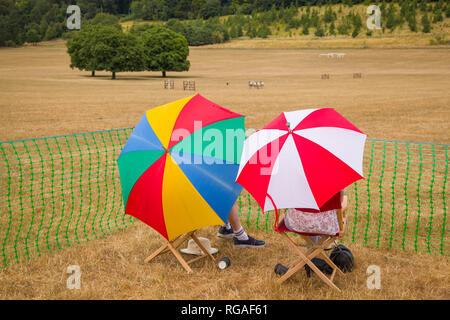 A couple enjoy the sheep dog trials under colourful umbrellas near Hambleden, Buckinghamshire, part of the Henley Show. - Stock Image