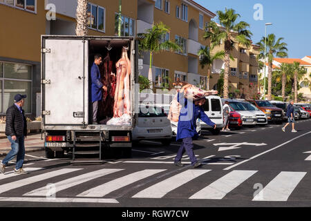 Meat delivery, pig carcasses being unloaded from a refrigerated van and delivered to a butchers shop in Playa San Juan, Tenerife, Canary Islands, Spai - Stock Image