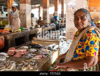Horizontal portrait of a lady selling fish at the fish market at Palayam in Trivandrum, Kerala, India. - Stock Image