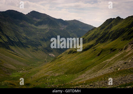 Mountainside with green grass, valley and small path, Carpathian Mountains in Romania - Stock Image