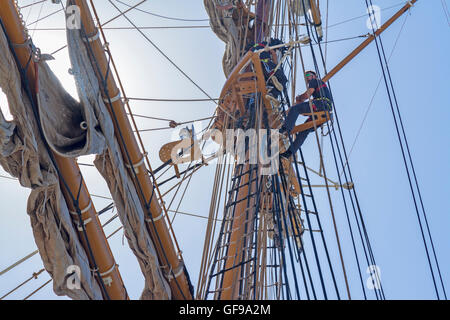 Crew of Fryderyk Chopin brig from Poland up the mast preparing to sail in the morning - Stock Image