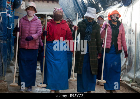 Parishioners form a line to tamp down the newly-laid floor of a temple undergoing reconstruction in Tsetang, Tibet, China - Stock Image