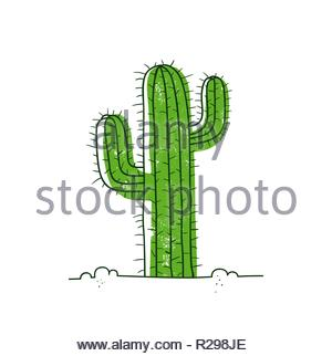 Green cactus in desert. Vector hand-drawn cartoon style illustration isolated on white background. Can be used as a print on t-shirts, bags, stationer - Stock Image