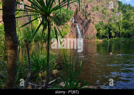 Wangi Falls, Litchfield National Park, Northern Territory, Australia - Stock Image