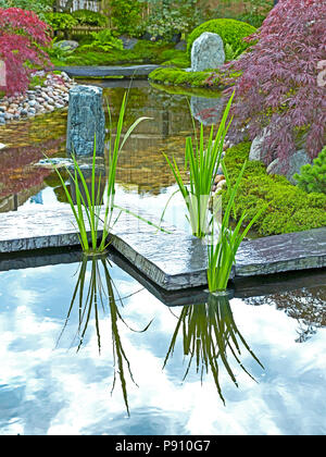 Traditional Japanese water garden with plants, shrubs, rocks and stone bridge - Stock Image