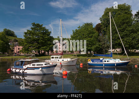 The Quay,Totness Devon Boats Moored on the River Dart - Stock Image
