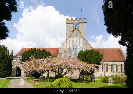 The Parish Church of St Peter and St Paul Ringwood - Stock Image