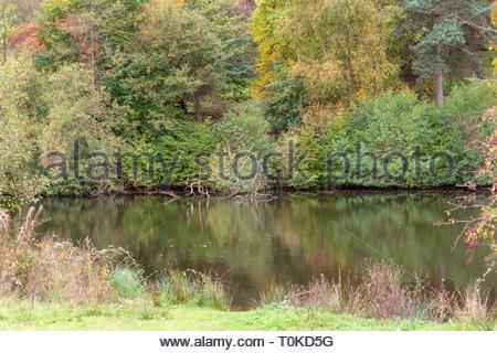 Lake Winkworth Arboretum - Stock Image