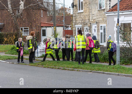 A 'walking bus' group of primary school children with 2 adult supervisers all in hi viz vests on the way home from school in the afternoon. - Stock Image