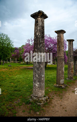 Olympia, Greece. The site of the Olympic Games in classical times. The Palaestra. - Stock Image