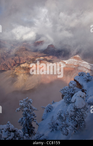 Winter views at Mather Point on the South Rim of Grand Canyon National Park, Arizona, USA - Stock Image
