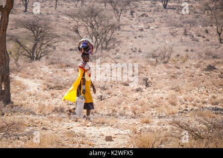 Samburu Maasai Woman, wearing traditional Masai attire, walking to her village with provisions in bundles that she carries by hand or on her head - Stock Image
