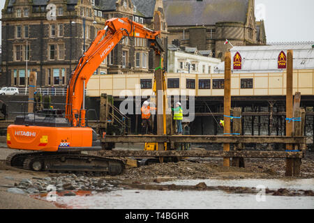 Contractors from Afan Engineering at work  at low tide repairing and renovating the heavily worm-damaged wooden jetty pier on Aberystwyth north beach. Wales UK. March 23 2019 - Stock Image