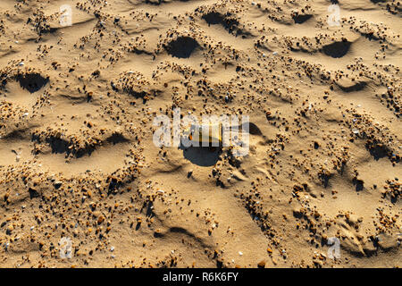 Pollution on the beach. Plastic breakup. - Stock Image