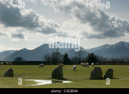 Sheep grazing at Castlerigg Stone Circle with Grasmoor and Causey Pike in the background - Stock Image