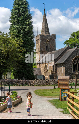 Linford, Leicestershire 21st June 2018: Blue sky's white clouds warm first day of summer as wild deer run free in the British countryside . Clifford Norton Alamy  Live News. 21st June 2018: Blue sky's white clouds warm first day of summer as wild deer run free in the British countryside . Clifford Norton Alamy  Live News. - Stock Image