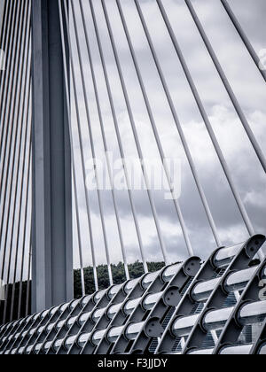 A detail of one tower and cable stays of the Millau Viaduct in Millau, Averyron, France. The highest bridge in the - Stock Image