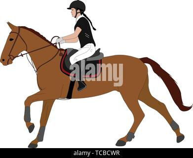 young woman riding horsecolor illustration. Equestrian sport. Equestrian dressage - vector - Stock Image