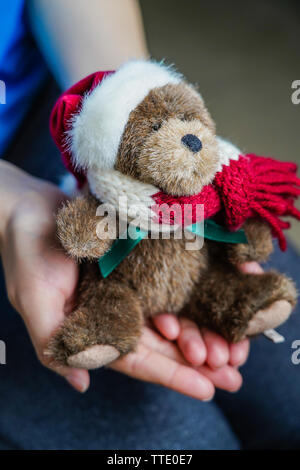 a small brown teddy bear in winter outfit on two hands - Stock Image